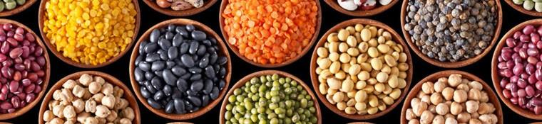 Bio Zöldségfélék