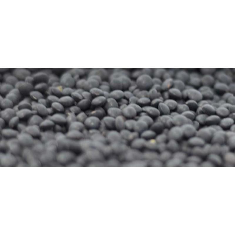 Bio Beluga Lencse, fekete, 500g